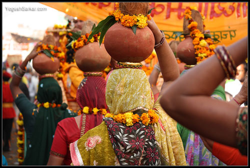 pushkar-camel-fair-2012