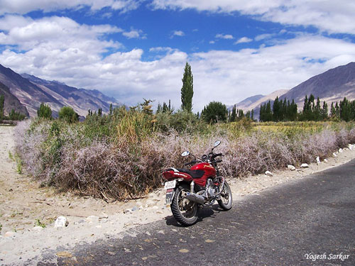 sumur-nubra-valley