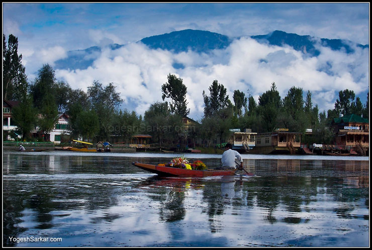 Floating flower shop in Dal Lake, Srinagar