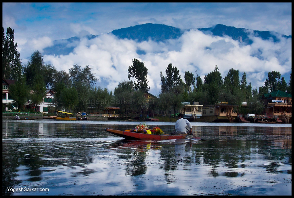 dal lake With 110 hotels nagin lake is popular among the travelers for hotel booking also there are 100 hotels near pari mahal, 96 hotels near chashma shahi and 96 hotels near indira gandhi memorial tulip garden.