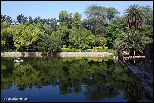 luscious-lodhi-garden