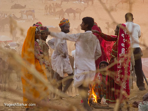 camel-traders