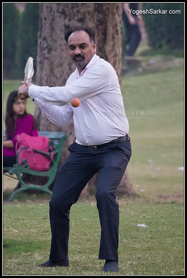 playing-cricket