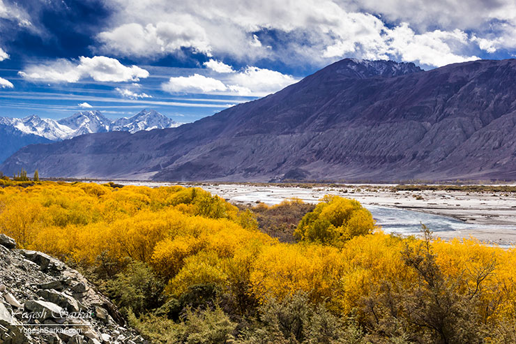 nubra-valley