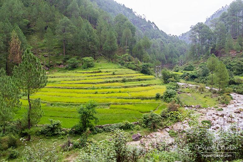 Kumaon, Uttarakhand
