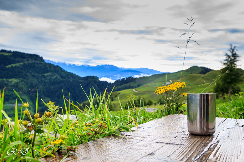 tea-in-the-mountains